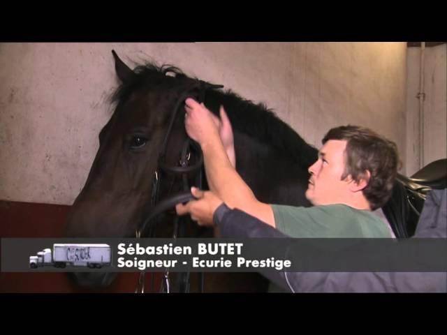 Visite du Cadre Noir de Saumur