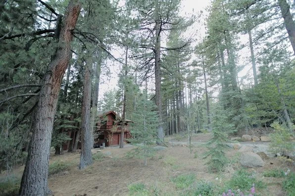 Cabin in the woods in Lake Tahoe