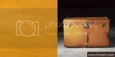 Louis Vuitton Leather
