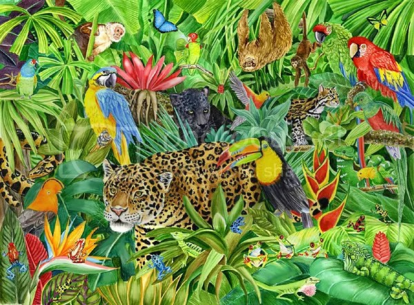 bunch of animals photo: Jungle Animals kazootoys_2004_56547826.jpg