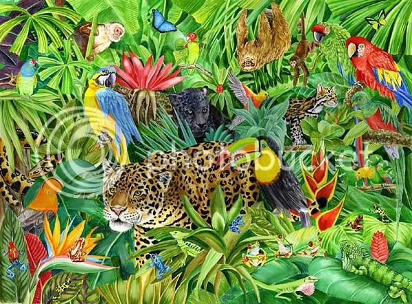 bunch of animals photo: Jungle Animals kazootoys_2004_56547826.jpg