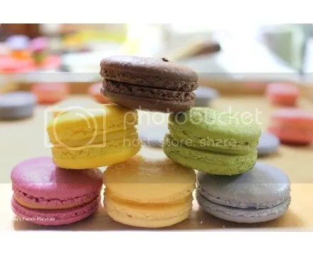 macaron