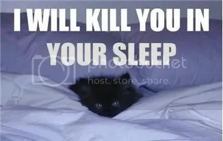 I will kill you lolcat