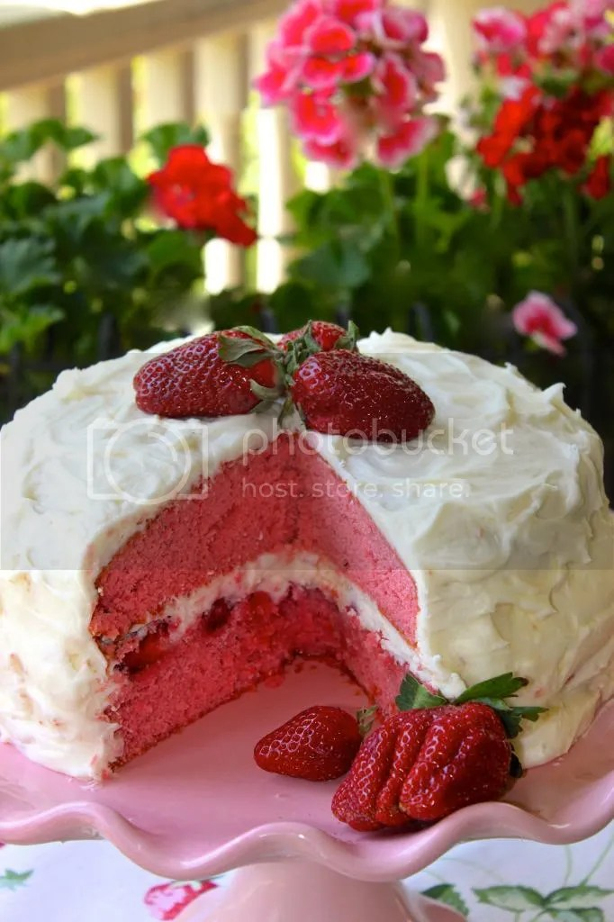 more strawberry cake photo kake.jpg