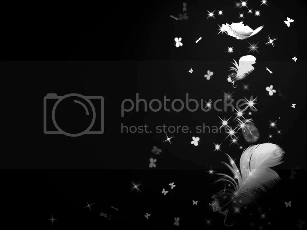 Rose Petals Falling Wallpaper Transparent Gif Feathers Photo By Anonymus1823 Photobucket