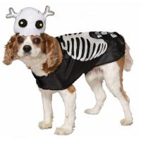 Skeleton Pet Costume - Walmart.com