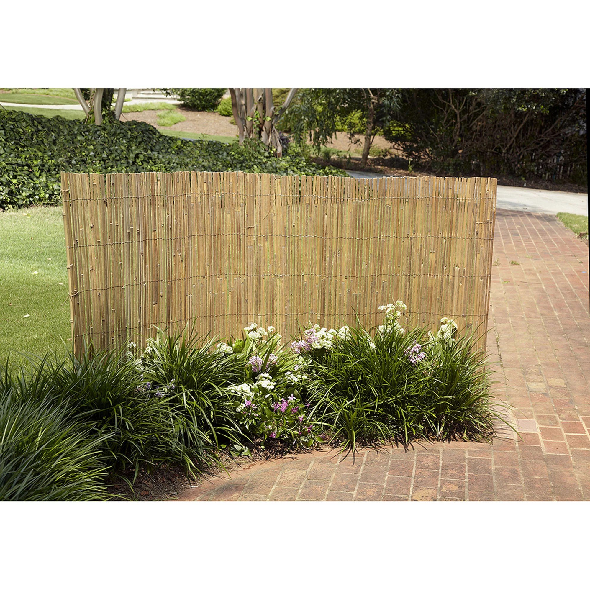 Bamboo Fence Canada Gardenpath 1 2 In Outside Peel Bamboo Fence 4 Ft H X 8 Ft L