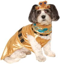 Cleopatra Dog Costume - Walmart.com