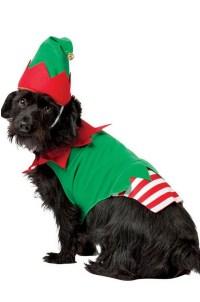 Elf Dog Costume - Walmart.com