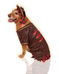 Big Dogs Pirate Boy Swashbuckler Jack Sparrow Dog Pet ...