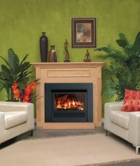 Mantis Fireplace Package - Liquid Propane - Walmart.com