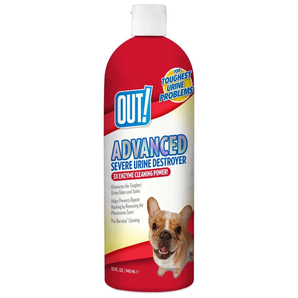 How To Get Urine Smell Out Of Clothes Out Advanced Severe Pet Urine Destroyer 32 Oz