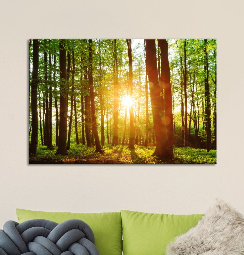 Printing Canvas Wall26 Canvas Prints Wall Art Sunrise Peeking Through A Green Rainforest Modern Wall Decor Home Decoration Stretched Gallery Canvas Wrap Giclee