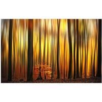 "Trademark Fine Art ""firewall"" Canvas Wal - Walmart.com"