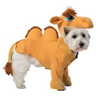 Camel Dog Costume - Walmart.com