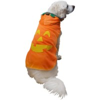Pumpkin Dog Costumes