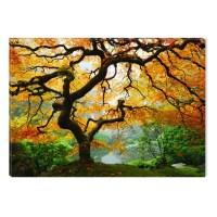 Startonight Canvas Wall Art Maple Tree USA Design for Home ...