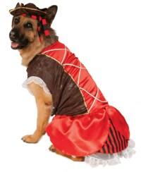 Big Dogs Pirate Girl Swashbuckler Jack Sparrow Dog Pet ...
