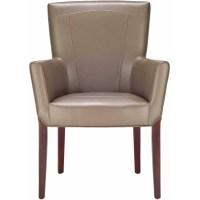 Safavieh Ken Arm Chair, Multiple Colors - Walmart.com