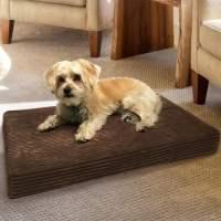 Animal Planet Orthopedic Dog Bed - Walmart.com