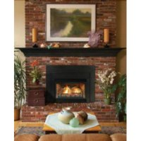 Direct Vent Fireplace Insert DV33IN73LP - Liquid Propane ...