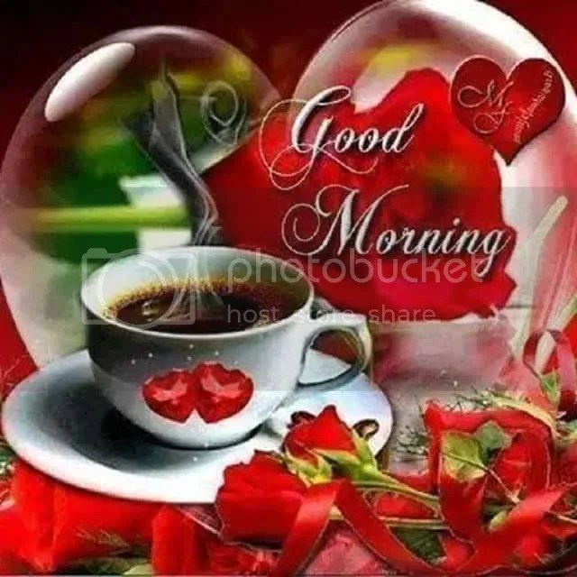 Cute Roses Wallpapers With Wordings Gambar Good Morning Wallpapers Page 508 Gambar Love Di
