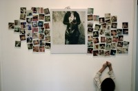 Home - Polaroids Wall