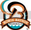 Bowie Baysox Team Logo