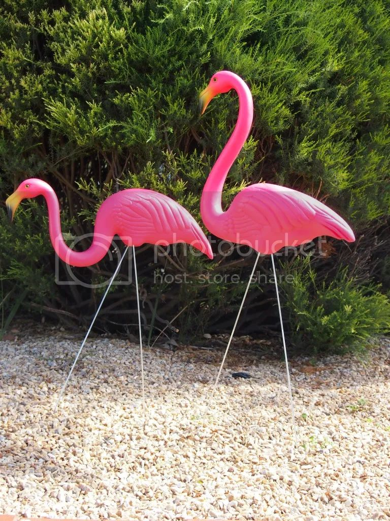 Funky orig signed don featherstone pink flamingo garden ornament