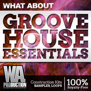 WA Production What About Groove House Essentials (ACiD WAV MiDi) coobra.net