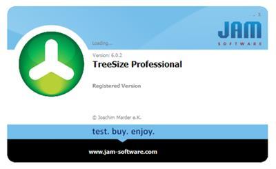 TreeSize Professional 6.3.3.1194 (x86/x64)