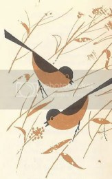 Charley Harper illustration of long tailed birds