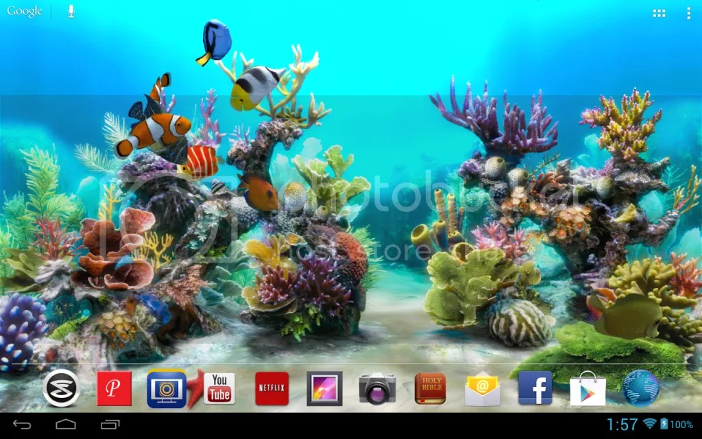 Fish 3d Live Wallpaper Download Awesome 3d Aquarium Live Wallpaper Android Forums At