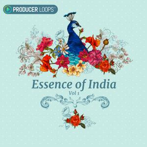 Producer Loops Essence of India Vol 1.ACiD WAV
