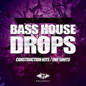 Polysonic Bass House Drops.WAV coobra.net