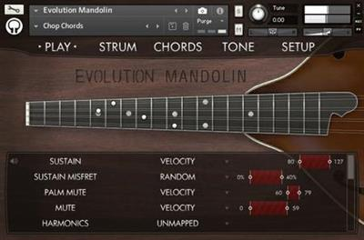 Orange Tree Samples Evolution Mandolin-KONTAKT