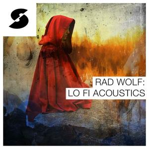 Samplephonics Wolf Lo-fi Acoustics MULTiFORMAT