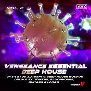 Vengeance - Essential Deep House Vol 2.WAV