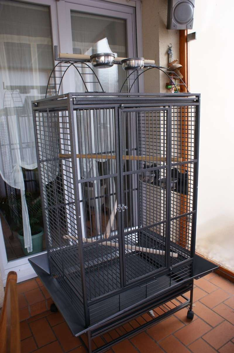 Canape Chesterfield Cage Perroquet Pas Cher