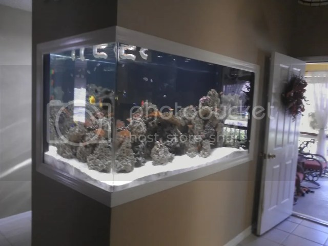 The full build is here http://www.reefcentral.com/forums/sh .php?t