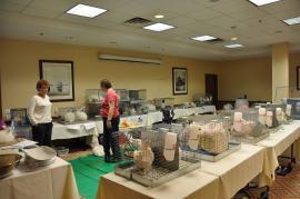 Setting Up For Registraton