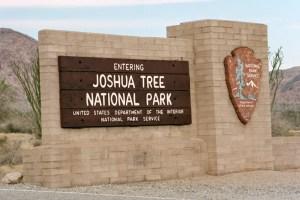 2003 Joshua Tree NP