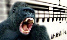 The Gorilla Chorus