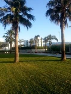 Playa Granada / 1