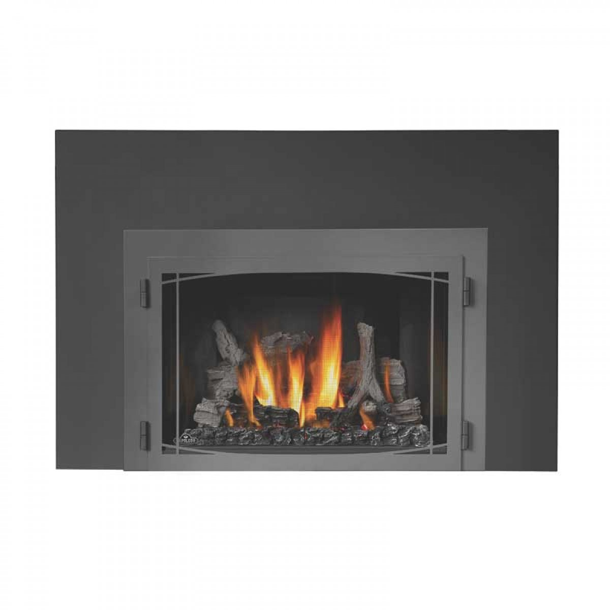 Standard Gas Fireplace Insert Dimensions Napoleon Ir3n 1sb Basic Fireplace Insert At Ibuyfireplaces