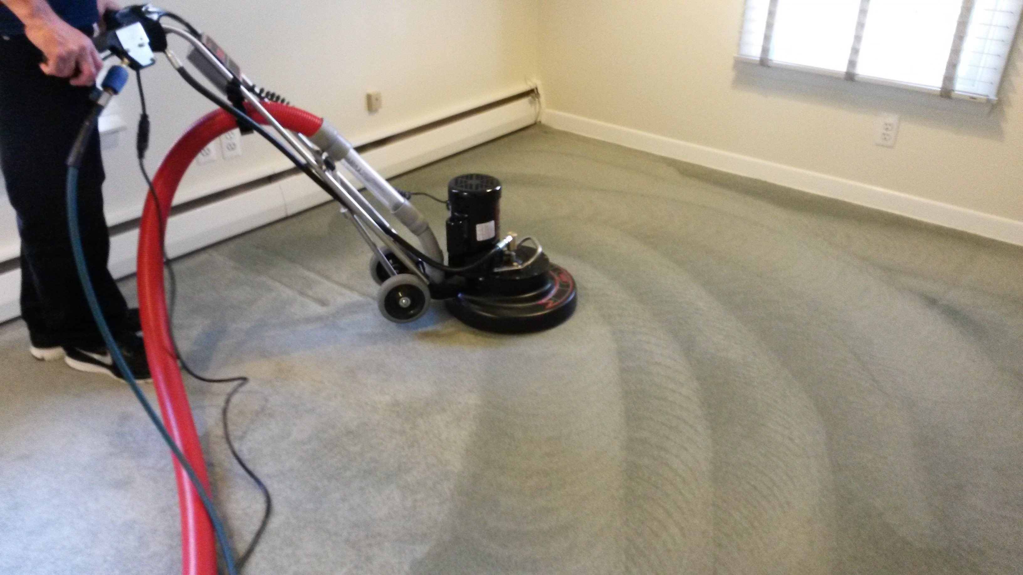 Carpet Cleaning Carpet Cleaning Services Ibx Services