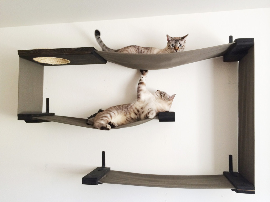 Cat Furniture Wall Wall Mounted Cat Shelves Decor Ideasdecor Ideas