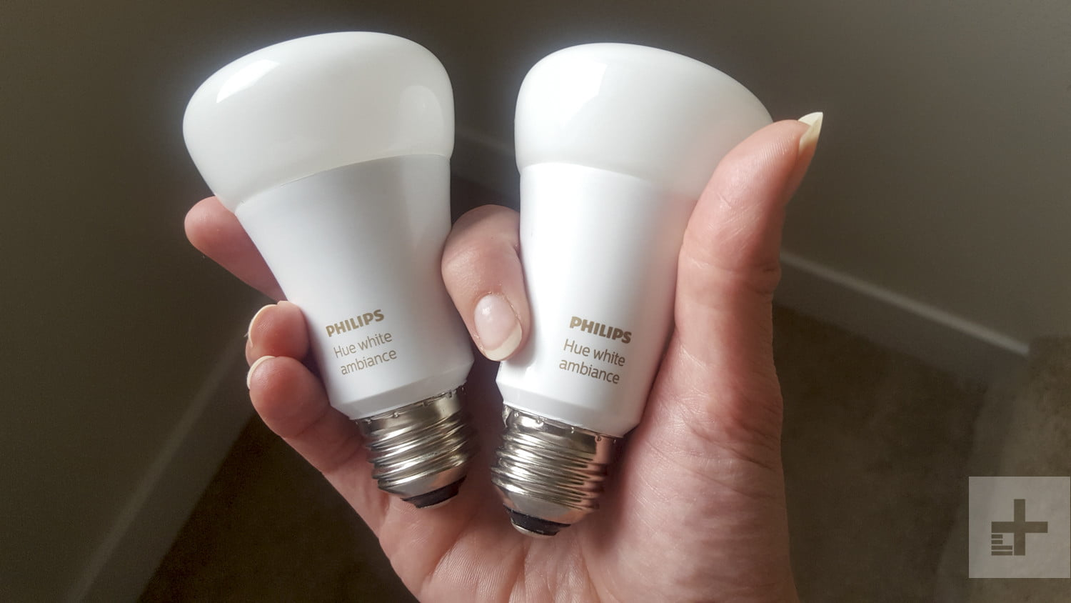Philips Lampen Plafond Philips Hue White Ambiance Starter Kit Review Digital Trends