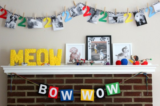 dog-and-cat-party-decoration-display