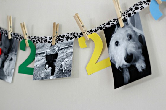 puppy-party-photo-banner
